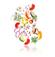 sliced vegetables concept vector image vector image