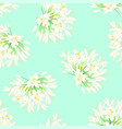 snow white agapanthus on green mint background vector image vector image