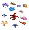Starfish and seashells big set of colorful images vector image vector image