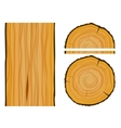 Timber and wood texture with elements vector image