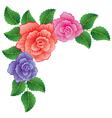colorful roses vector image vector image