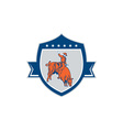 Rodeo Cowboy Bull Riding Retro Shield vector image vector image