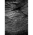 Sawed Wood Texture vector image