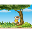A monkey with bananas near a tree with vine plants vector image vector image