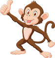 Cute monkey giving thumb up isolated vector image vector image