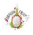 hand draw colored dragon fruit vector image vector image