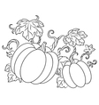 Pumpkin harvest drawing in retro style vector image vector image