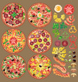 set of different pizza ingredients six types of vector image
