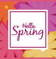 hello spring word multicolor flowers background vector image