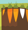abstract carrots garden collage vector image vector image
