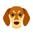 dog face icon flat style vector image vector image