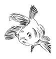 Hand sketch fish vector image vector image