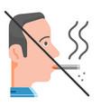 no smoking flat vector image