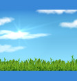 realistic lawn and sky 3d spring grass background vector image