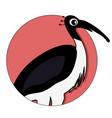 ibis icon for ui app vector image