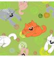 kittens seamless pattern vector image