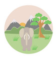gray elephant in the tropics vector image