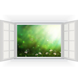 Open window of daisies in a meadow vector image vector image