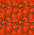 seamless pattern hand drawn tomato vector image vector image