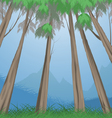 Trees tropical vector image vector image