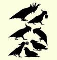 cockatoo birds animal silhouette vector image vector image