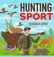hunting sport forest wildlife animals and birds vector image vector image