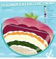 Sea under a fur coat vector image vector image