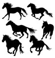 silhouette of horses galloping vector image vector image