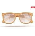 Vintage sunglasses with wooden frame vector image vector image