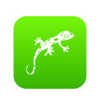 chameleon icon digital green vector image vector image