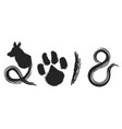 dog year 2018 calligraphy background vector image vector image