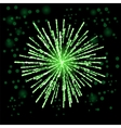 Green Firework Lights vector image