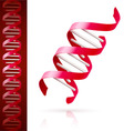 Red dna vector image vector image