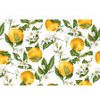seamless pattern with orange fruit tree branches vector image vector image