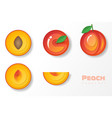 set of peaches in paper art style vector image vector image