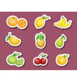 Sticker series of fruits vector image