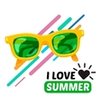 Sunglasses and text vector image vector image