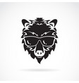 bear wear sunglasses on white background wild vector image