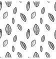 black and white botanical seamless pattern vector image vector image