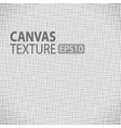 canvas texture vector image vector image