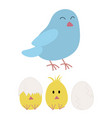 mother bird and chicken hatching vector image vector image