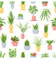 pot plants seamless pattern houseplants cactus vector image