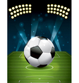 Soccer - Football on a Grass Field vector image vector image