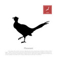 black silhouette a japanese green pheasant vector image vector image