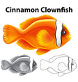 doodle character for cinnamon clownfish vector image