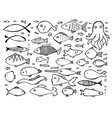 hand drawn logo template or doodle fishes vector image
