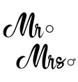 mr and mrs vector image vector image