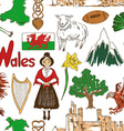 Sketch Wales seamless pattern vector image vector image