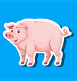 a pig sticker character vector image vector image