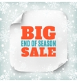 Big end of season sale poster template vector image vector image